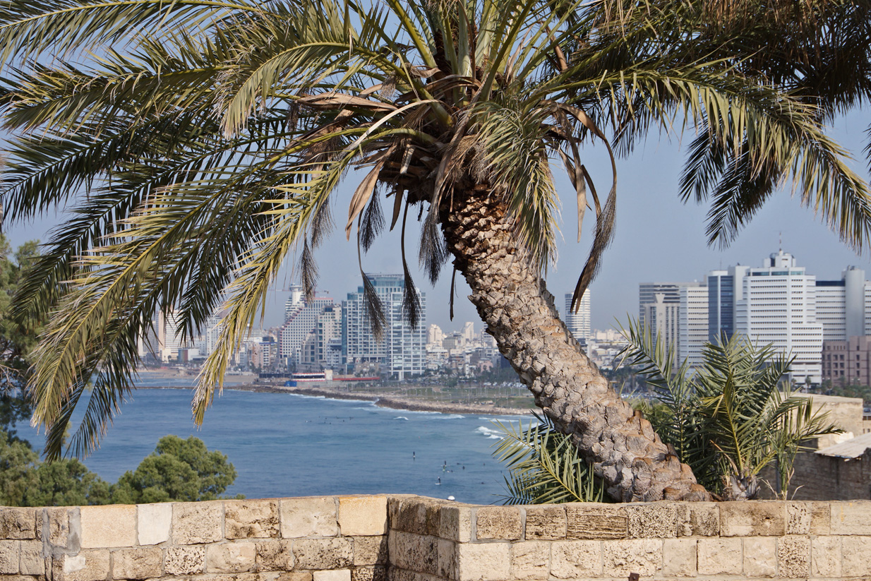 A View from Jaffa