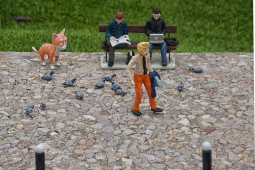 miniature pigeons